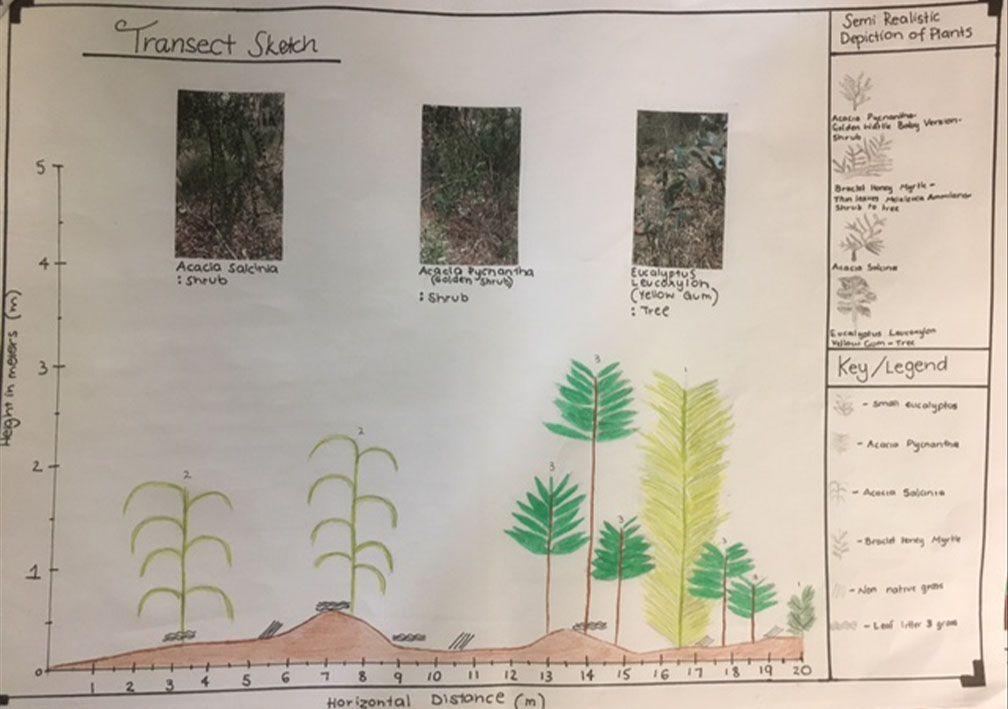 Year 9 Biomes Geog excursion