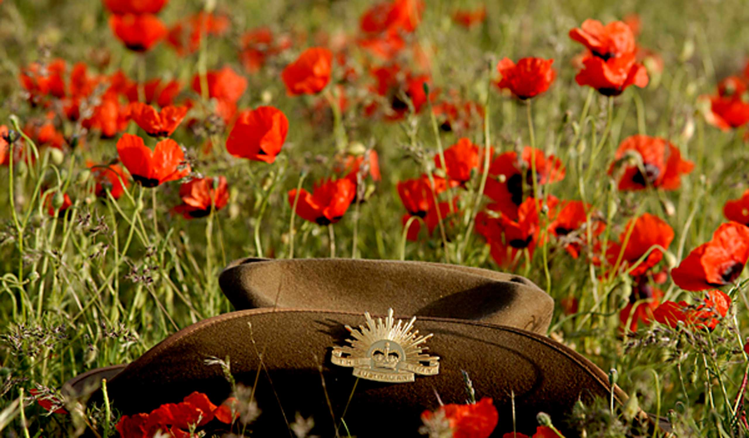 anzac_day_hat_poppy
