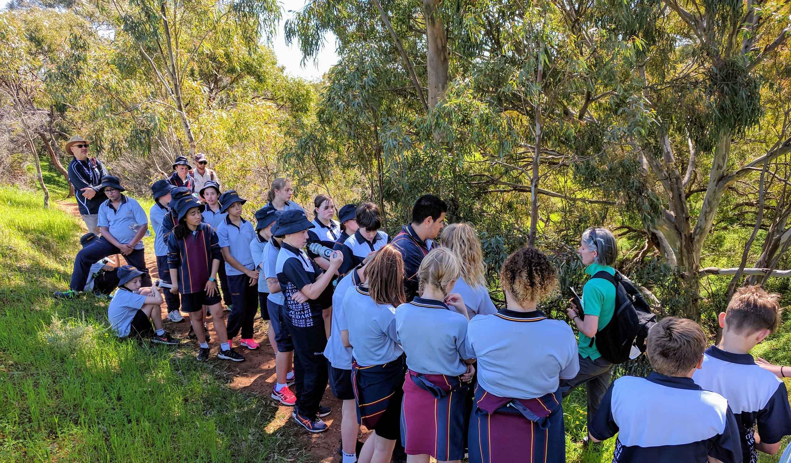 Year 7 Cobbler Creek walk 1