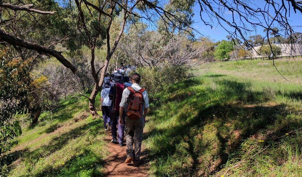 Year 7 Cobbler Creek walk 2
