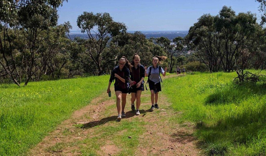Year 7 Cobbler Creek walk 3