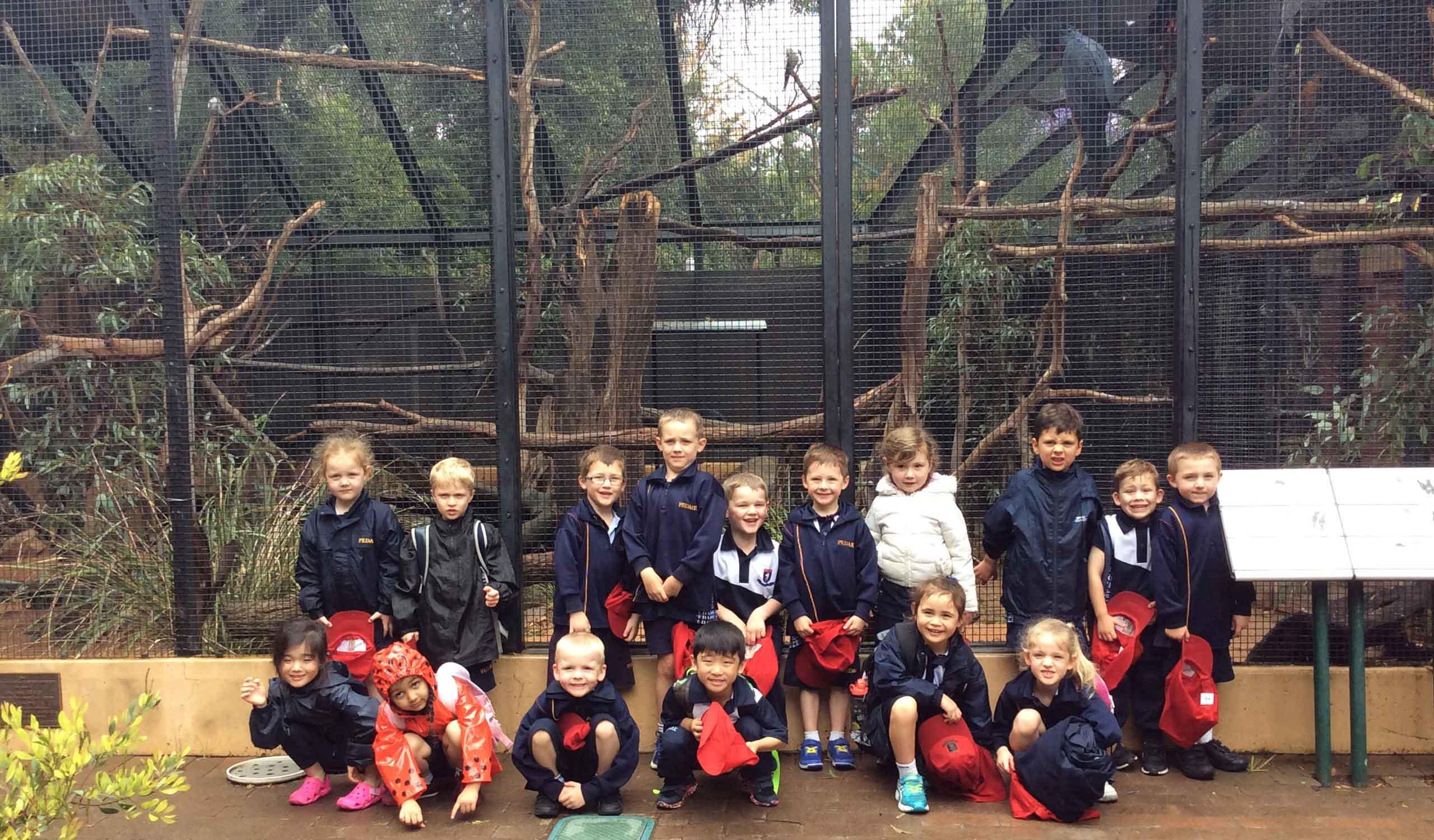 Reception Ready Zoo 1