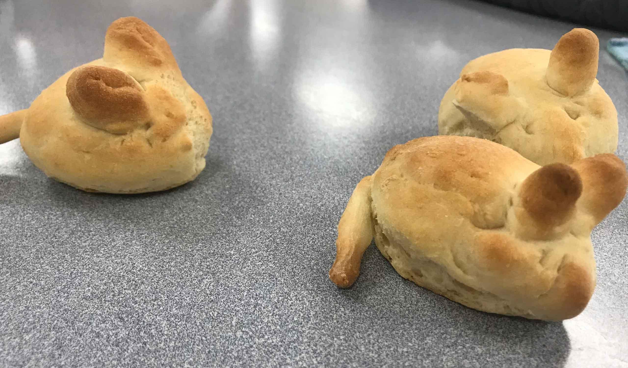 Year-10-Bread-animals-4