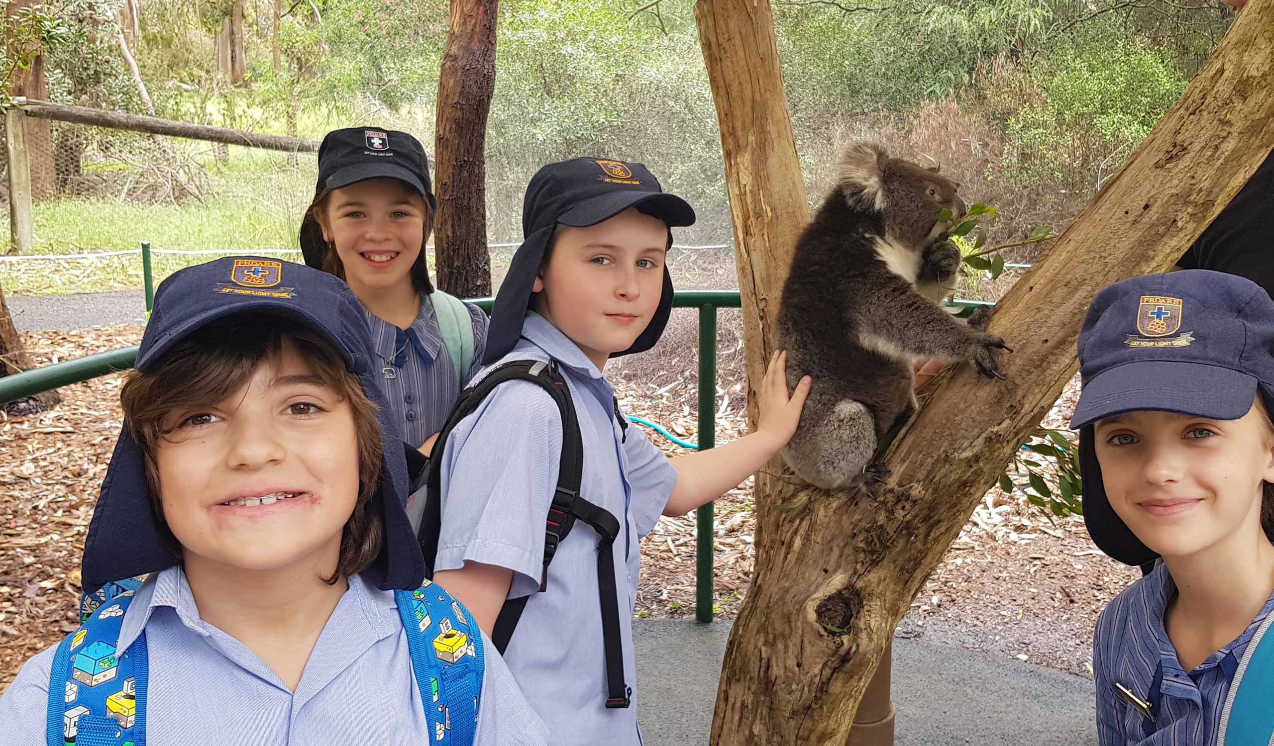 Year-5-Cleland-Wildlife-Park-1
