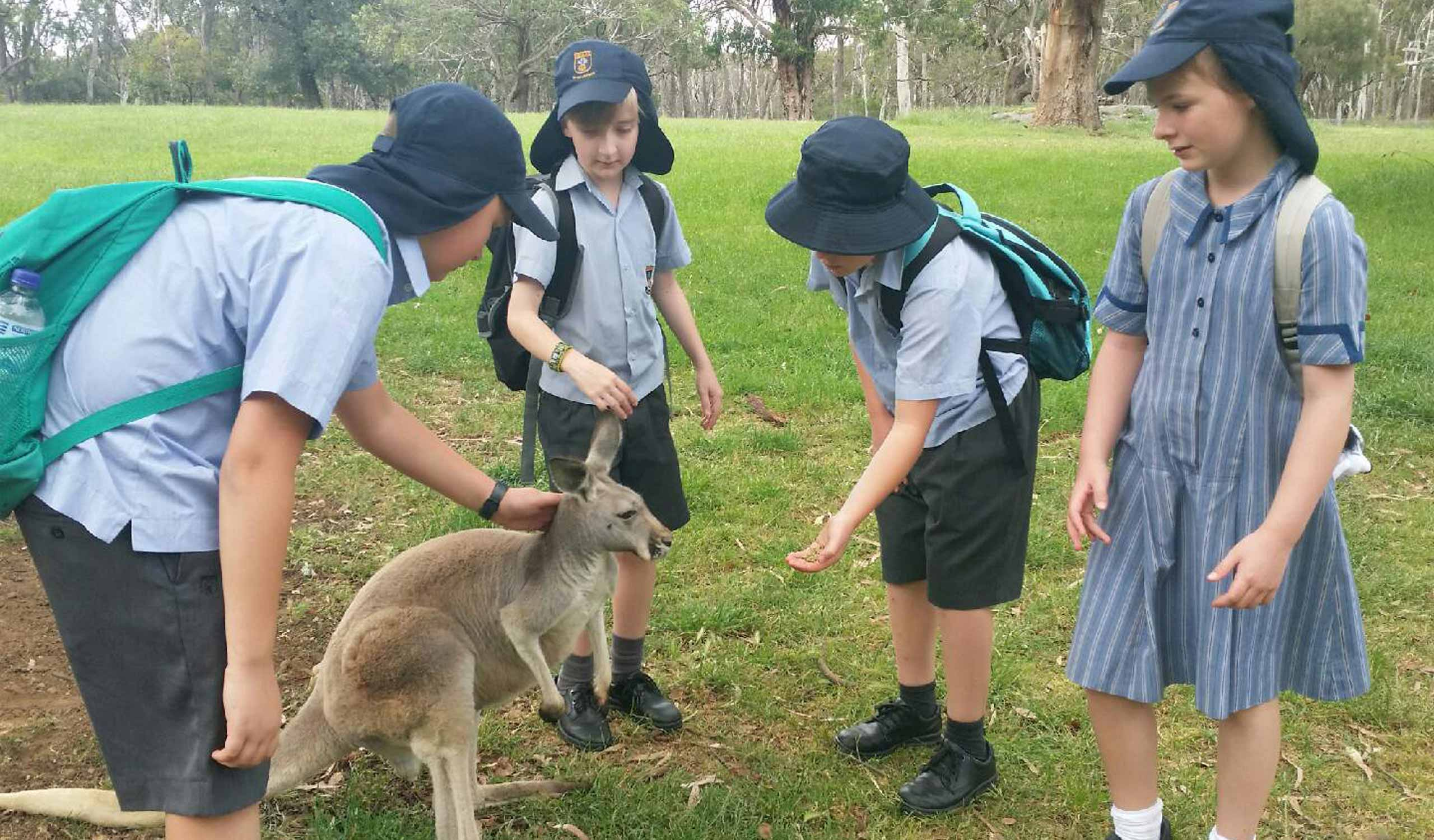 Year-5-Cleland-Wildlife-Park-3